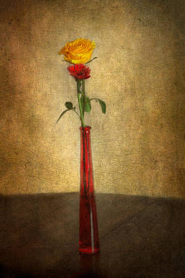 Photograph - Vintage Rose by Garvin Hunter