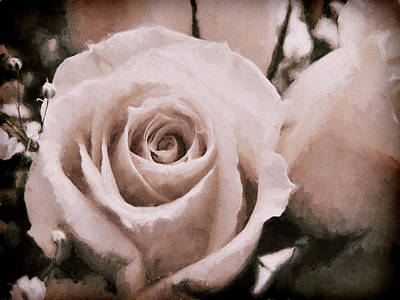 Photograph - Vintage Rose by Lisa Kaye