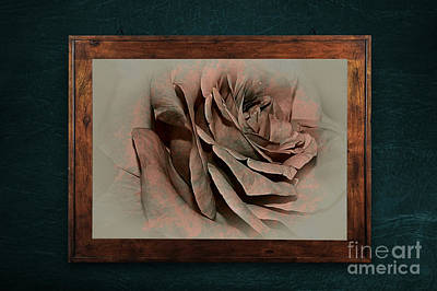 Photograph - Vintage Rose On Old Wall By Kaye Menner by Kaye Menner