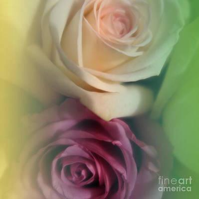 Photograph - Vintage Roses 2 by Tara  Shalton