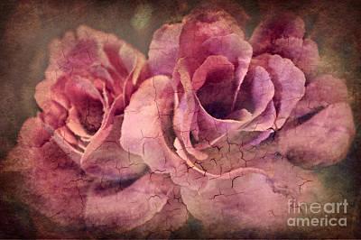 Photograph - Vintage Roses - Deep Pink by Judy Palkimas