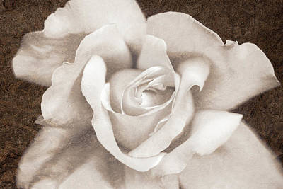 Art Print featuring the photograph Vintage Sepia Rose Flower by Jennie Marie Schell