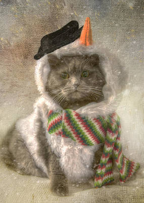 Photograph - Vintage Snowman Grey Cat by Joann Vitali