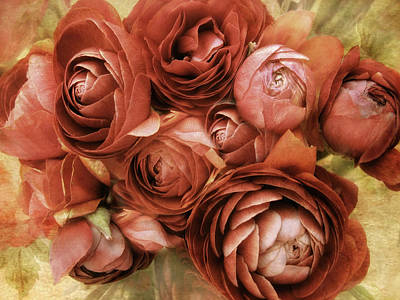 Ranunculus Photograph - Vintage Spring by Jessica Jenney