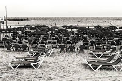 Photograph - Vintage Tel Aviv Beach by John Rizzuto