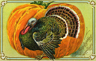 Turkey Drawing - Vintage Thanksgiving Card by American School
