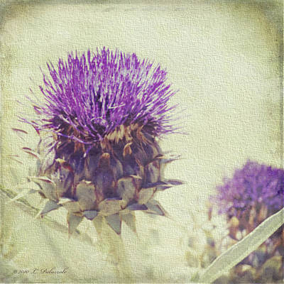 Vintage Thistle Art Print by Laura Palazzolo