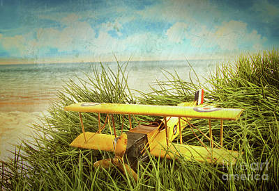 Vintage Toy Plane In Tall Grass At The Beach Art Print by Sandra Cunningham