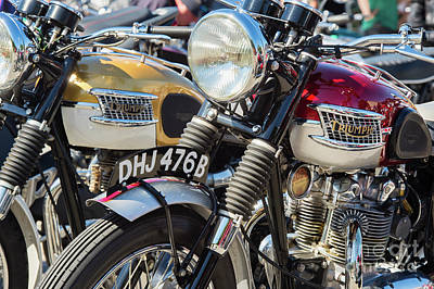 Photograph - Vintage Triumphs by Tim Gainey