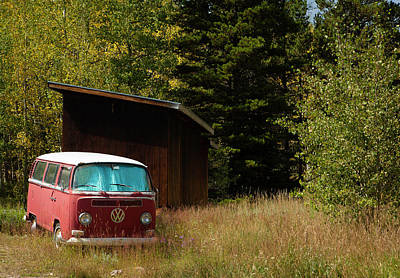 Photograph - Vintage Volkswagen And Aspens 1 by Marilyn Hunt