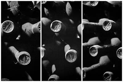 Vintage Wine Lovers Photograph - Vintage Wine Triptych Panel by Georgia Fowler