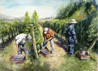 Wine Grapes Painting - Vineyard Watercolor by Olga Shvartsur