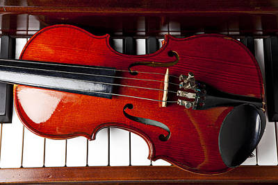 Violin Photograph - Viola On Piano Keys by Garry Gay