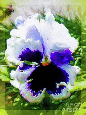 Viola Orchid Tricolore Art Print