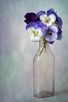 Johnny Jump Up Pansy Photograph - Violas In A Vase by Cindy Carter Photography