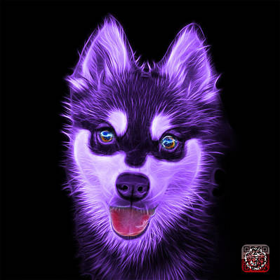 Painting - Violet Alaskan Klee Kai - 6029 -bb by James Ahn