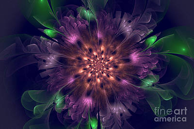 Violet Beauty Original
