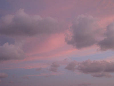 Photograph - Violet Cloud Formation 1 by Brenda Berdnik