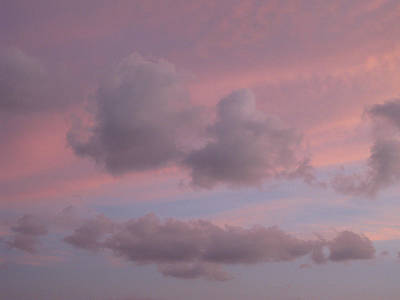 Photograph - Violet Cloud Formation 2 by Brenda Berdnik
