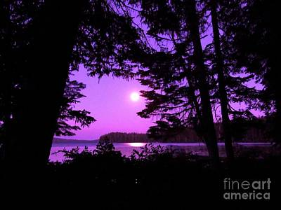 Moon Photograph - Violet Magic by Julie Pacheco-Toye