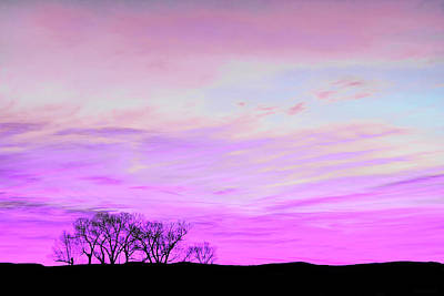 Photograph - Violet Skies by Jennie Marie Schell