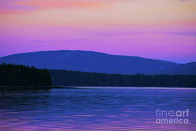 Photograph - Violet Sunset Maine by Patti Whitten