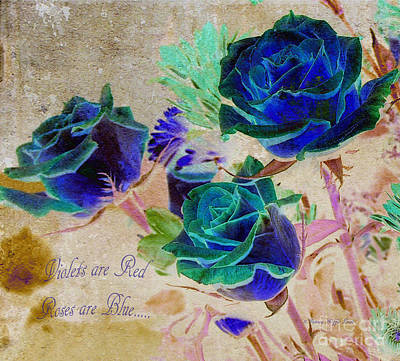 Photograph - Violets Are Red- Roses Are Blue by Patricia Griffin Brett