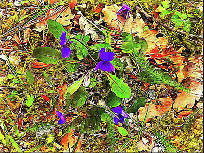 Digital Art - Violets Grace The Countryside by Dorothy Berry-Lound