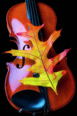 Photograph - Violin And Autumn Leaf by Garry Gay
