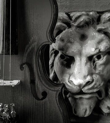 Photograph - Violin And Lion Face Black And White by Garry Gay