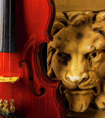 Photograph - Violin And Lion Face by Garry Gay