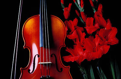 Red Gladiolus Photograph - Violin And Red Gladiolus by Garry Gay