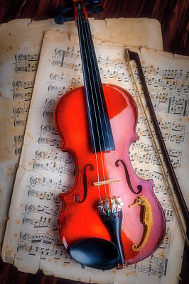 Photograph - Violin And Seahorse by Garry Gay
