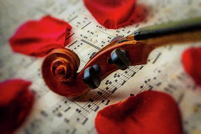 Sheet Music Photograph - Violin Close Up by Garry Gay