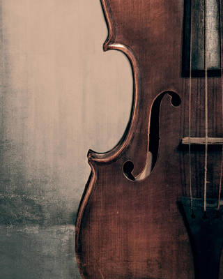 Violin Photograph - Violin Portrait  by Emily Kay