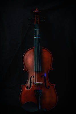 Music Royalty-Free and Rights-Managed Images - Violin Portrait Music 11 by David Haskett II
