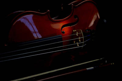 Music Royalty-Free and Rights-Managed Images - Violin Portrait Music 12 by David Haskett II