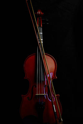 Music Royalty-Free and Rights-Managed Images - Violin Portrait Music 13 by David Haskett II