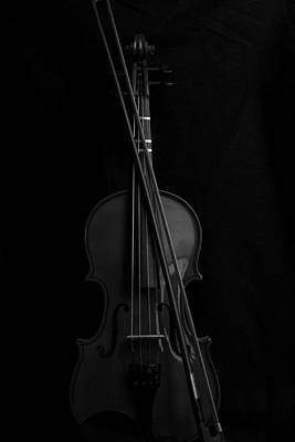 Music Royalty-Free and Rights-Managed Images - Violin Portrait Music 14a Black White by David Haskett II