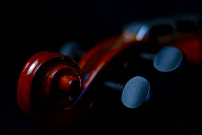 Photograph - Violin Portrait Music 20 Macro by David Haskett II