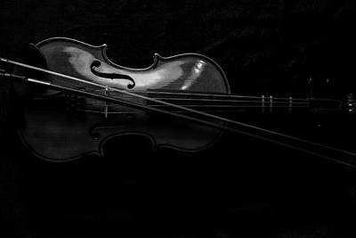 Photograph - Violin Portrait Music 21 Black White by David Haskett II