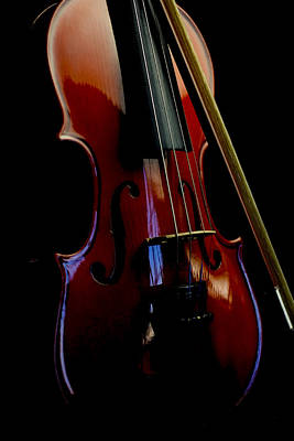 Photograph - Violin Portrait Music 23 by David Haskett