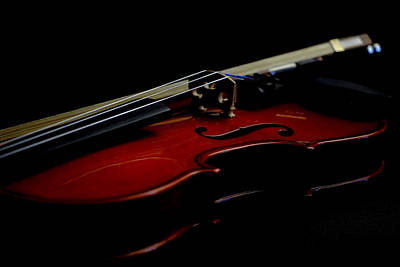 Photograph - Violin Portrait Music 24 by David Haskett