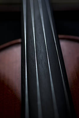 Photograph - Violin Portrait Music 3 by David Haskett