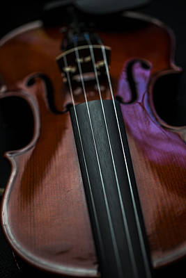 Music Royalty-Free and Rights-Managed Images - Violin Portrait Music 5 by David Haskett II