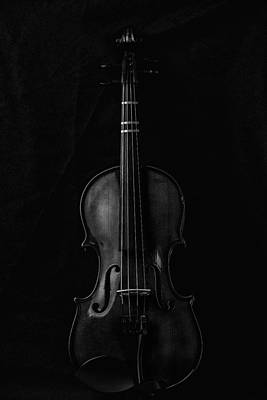 Music Royalty-Free and Rights-Managed Images - Violin Portrait Music 7 Black White by David Haskett II