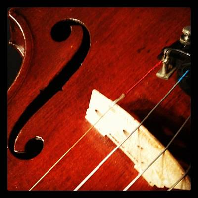 Classical Wall Art - Photograph - Violin Bridge by Heather Classen