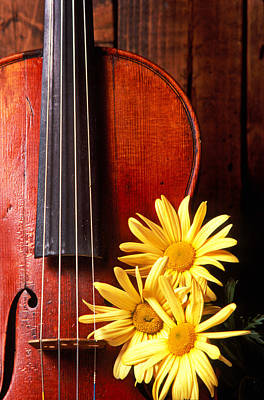 Violin With Daises  Art Print