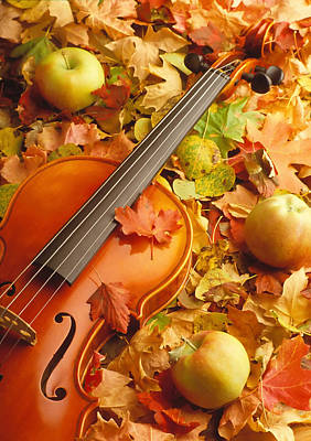 Photograph - Violin With Fallen Leaves by Douglas Pulsipher