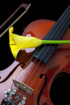 Music Photograph - Violin With Yellow Calla Lily by Garry Gay